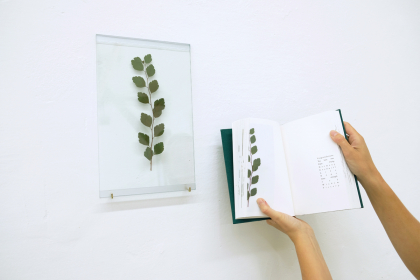 Tussie Mussie (2020) | variable dimensions | installation with flora, glassplates, cabinet, book