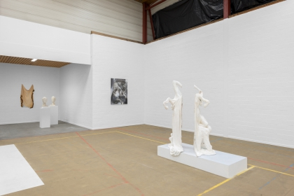 Exhibition view 'The edge of obliquity'