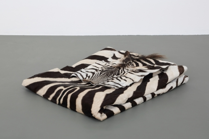 Introverted (2014) | appr. 80 x 60 x 15 cm | folded zebraskin