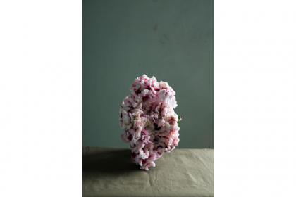Untitled 6 - from the series Plants (2013) | edition of 5 + 2 AP | 57,5 x 39 cm | inkjet print on aluminum (framed)